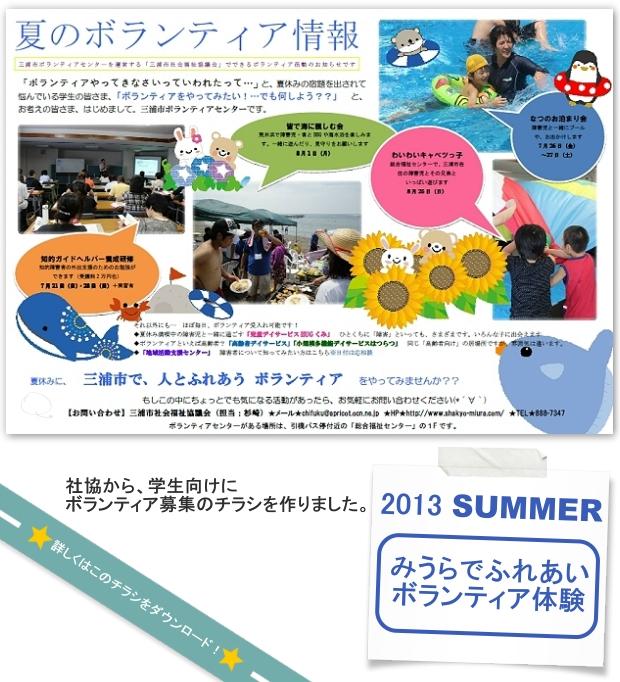 volunteer2013a